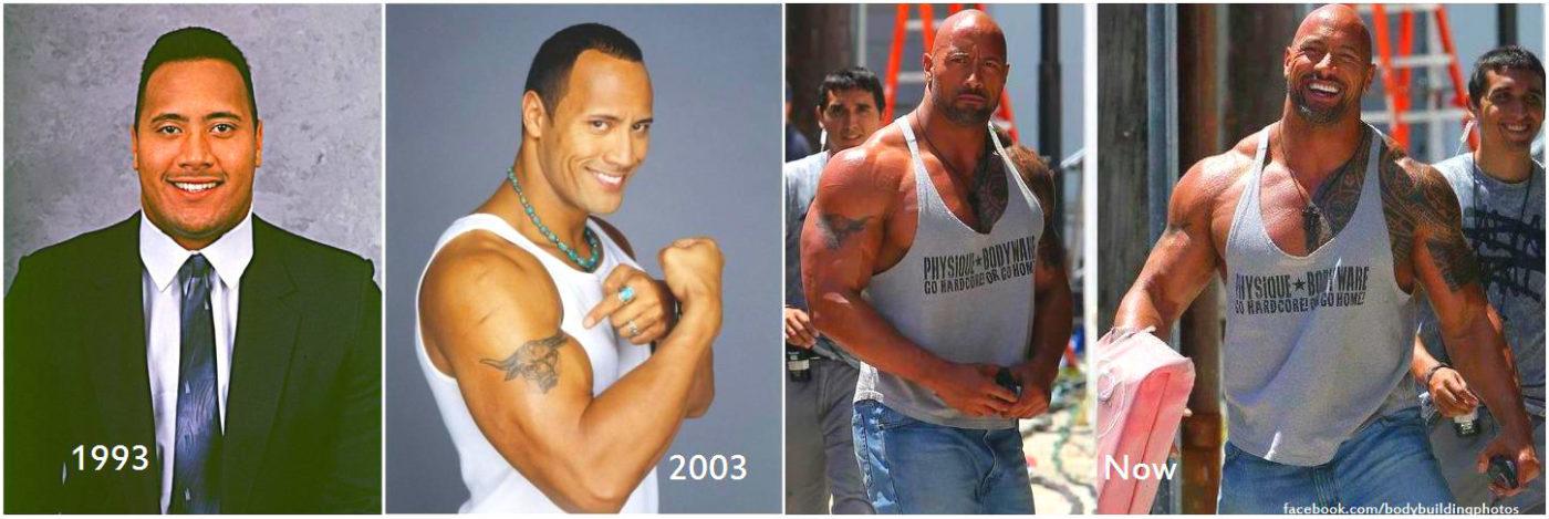 dwayne johnson body transformation wwwpixsharkcom
