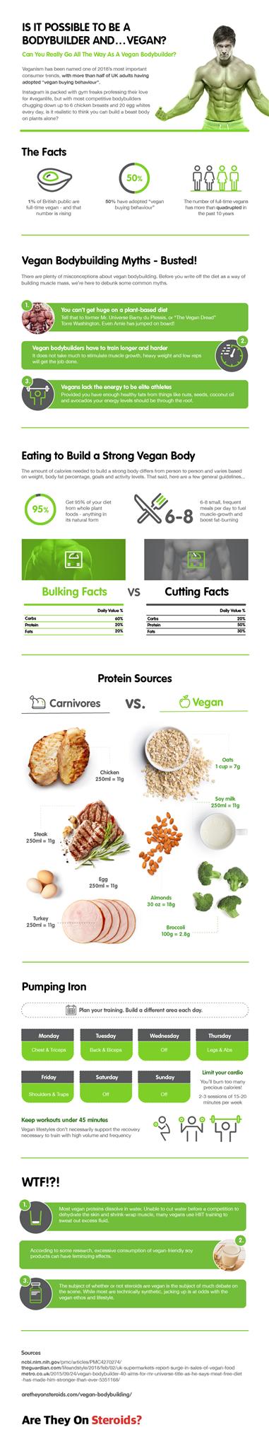 Infographie de bodybuilding végétalien