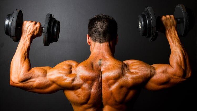 Vue arrière de la formation de bodybuilder avec des haltères