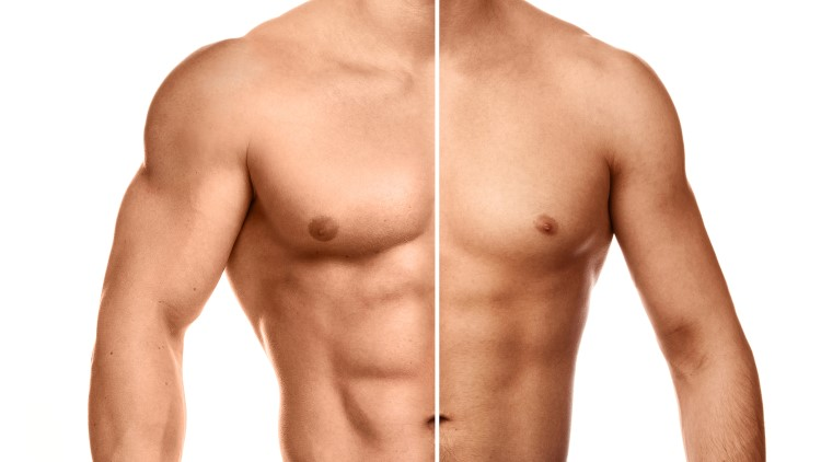 Comparaison de la poitrine musculaire fond blanc