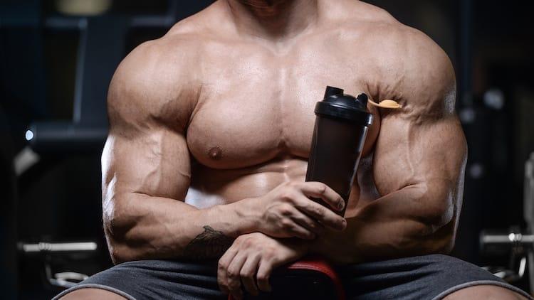 croissance musculaire rapide